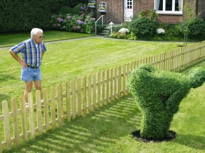 Правила установки заборов между соседями